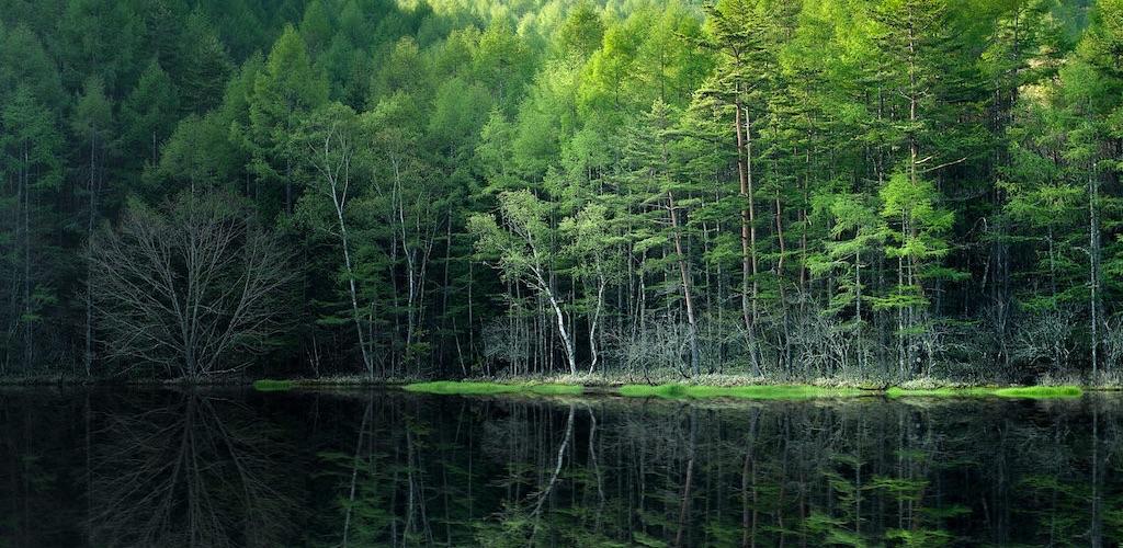 御射鹿池は神秘的な雰囲気と幻想的な魅力を見せる奇跡の絶景