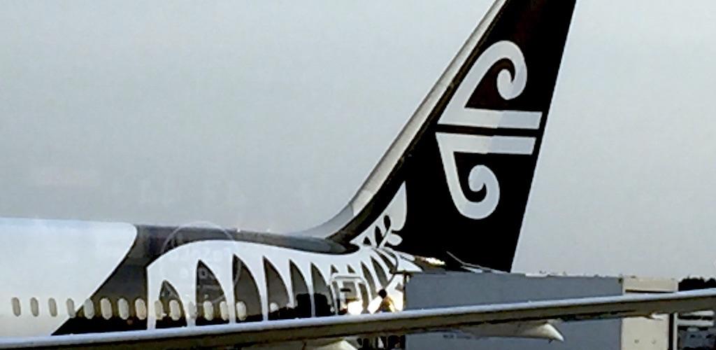 世界の中でも有数の絶景撮影地のニュージーランドの南島1周旅行
