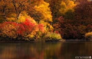 風景写真家の収入と稼ぎ方