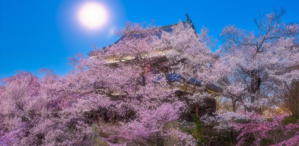 上田城は歴史的にも重要で見どころが多い上田市の観光名所