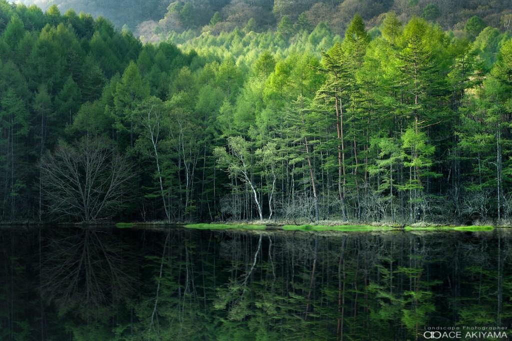 売れる風景写真を撮影する方法