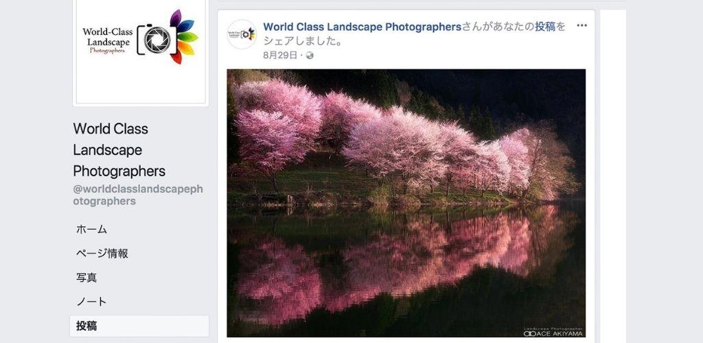 写真SNSの投稿サイトは世界基準で写真レベルを確認する必要性